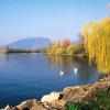 Neuchâtel: Le plus grand lac de Suisse
